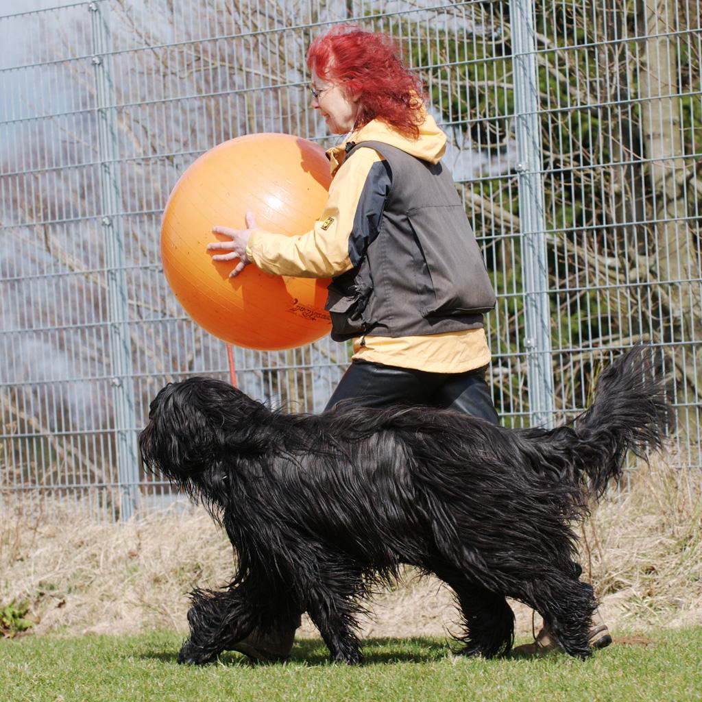 Frau mit Hund und großem Ball