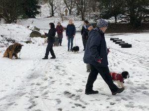 Menschen mit Hunden im Schnee